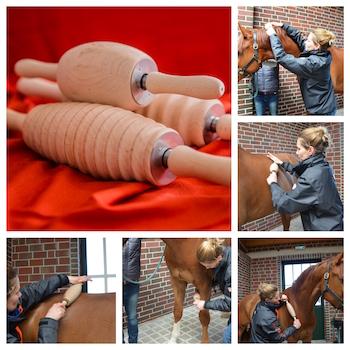 RollArt® für den Pferdebereich